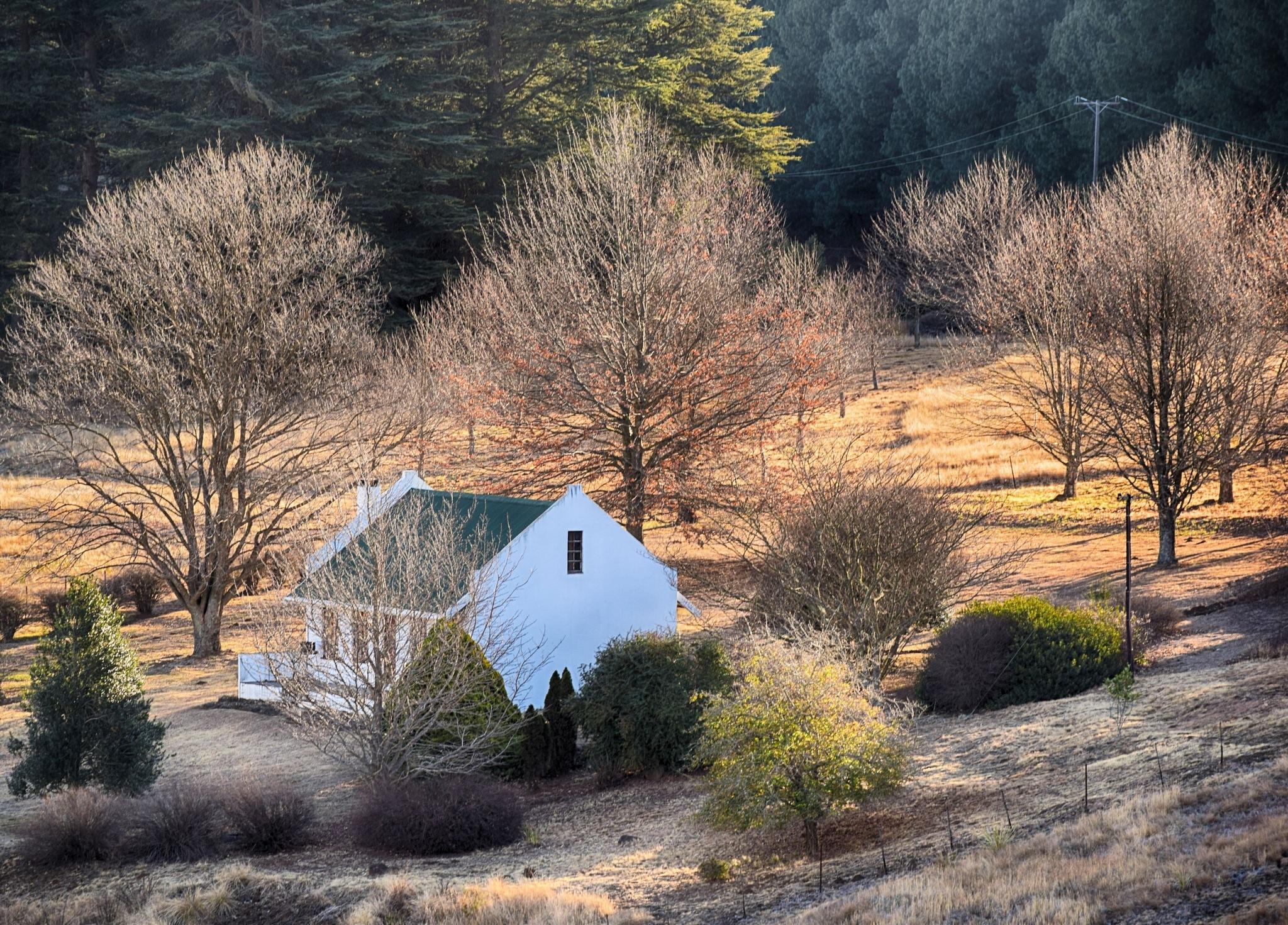 The Quaint Cottage by debbielott