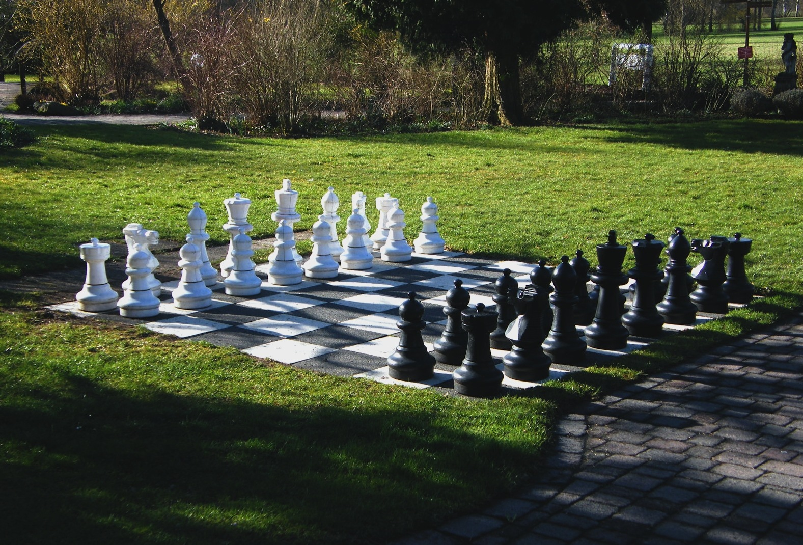 Chess in the Morning by Wolfgang Schmid