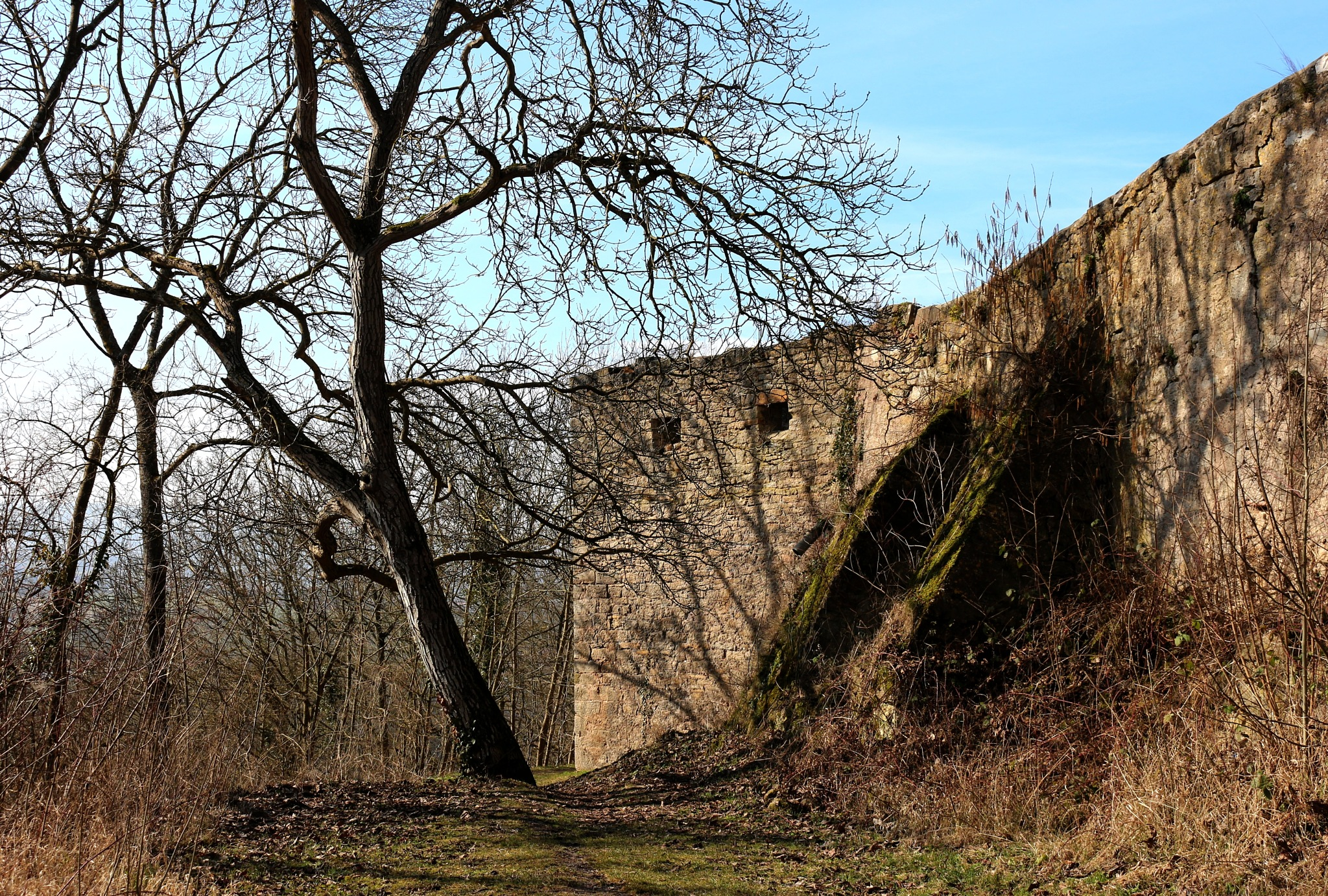 Ruin Triburg by Wolfgang Schmid
