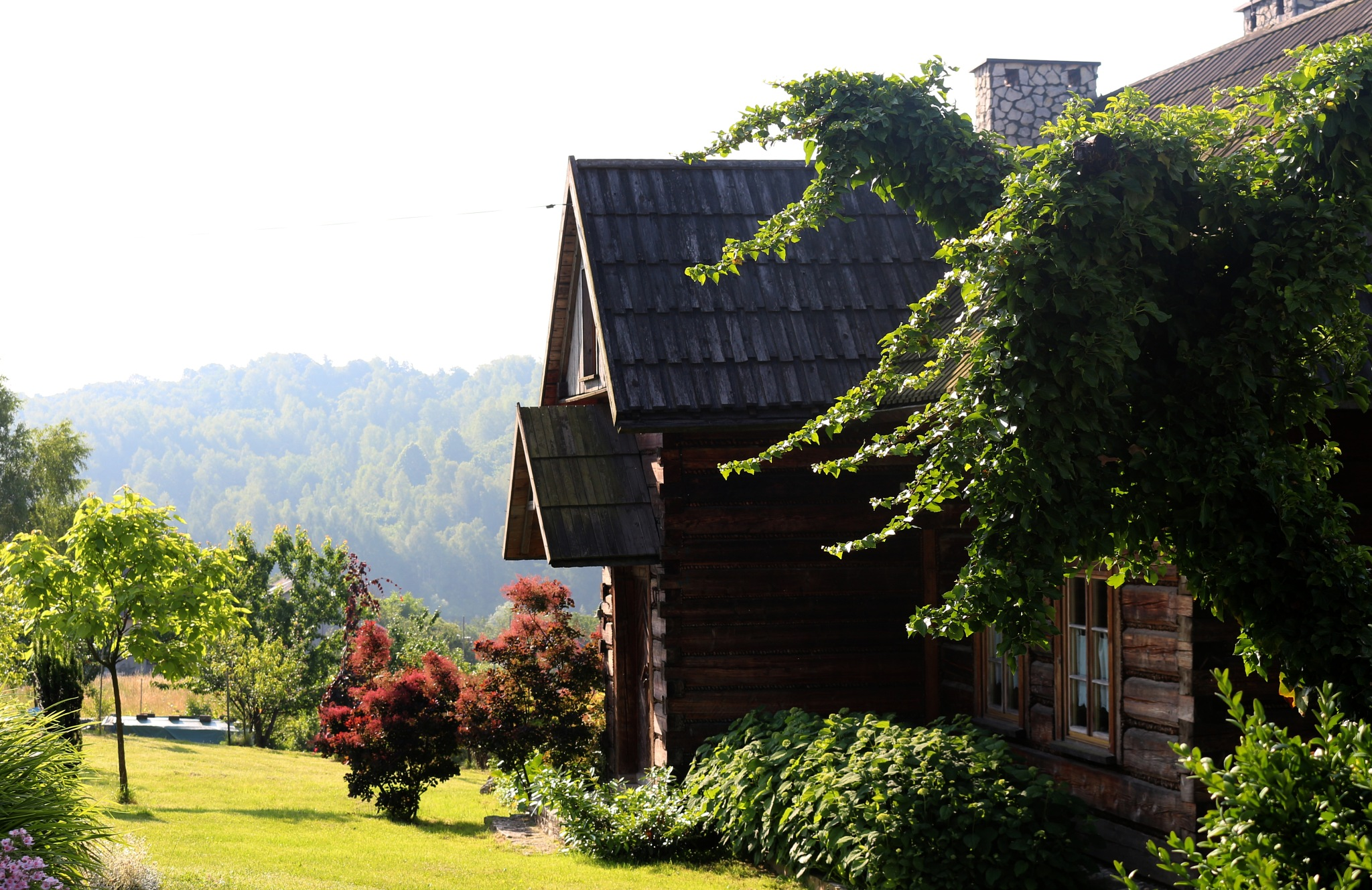 Wooden house somewhere in the country by Wolfgang Schmid