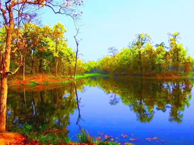 Chitvan National Park # Reflection # Nature by Bharat75