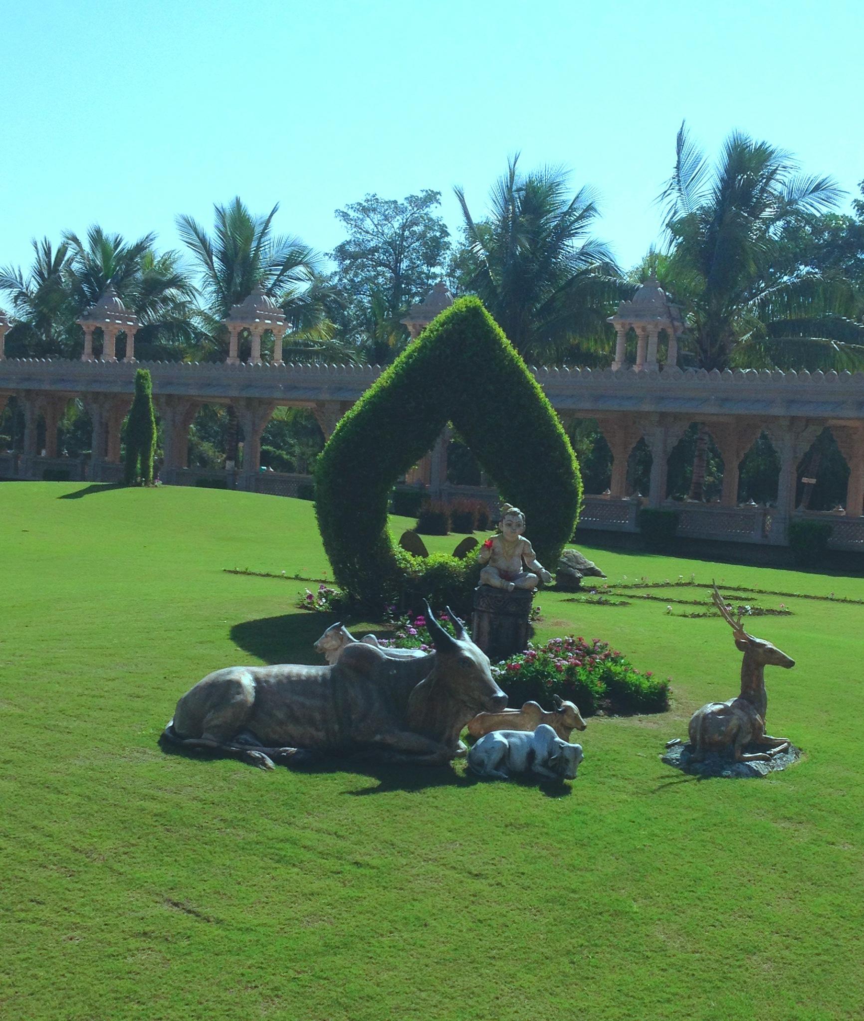 Beautiful Garden Nature by Bharat75