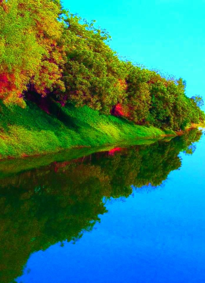Nature # Reflection by Bharat75