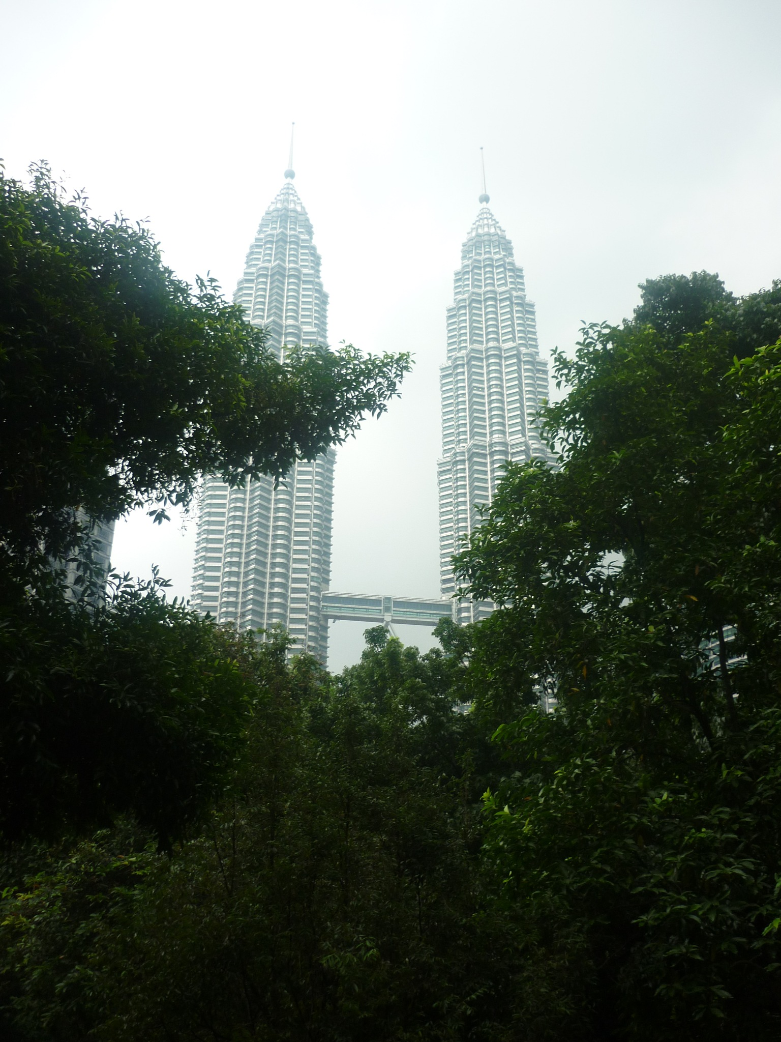 Petronas Towers above the Park by Paolo Paparazzi