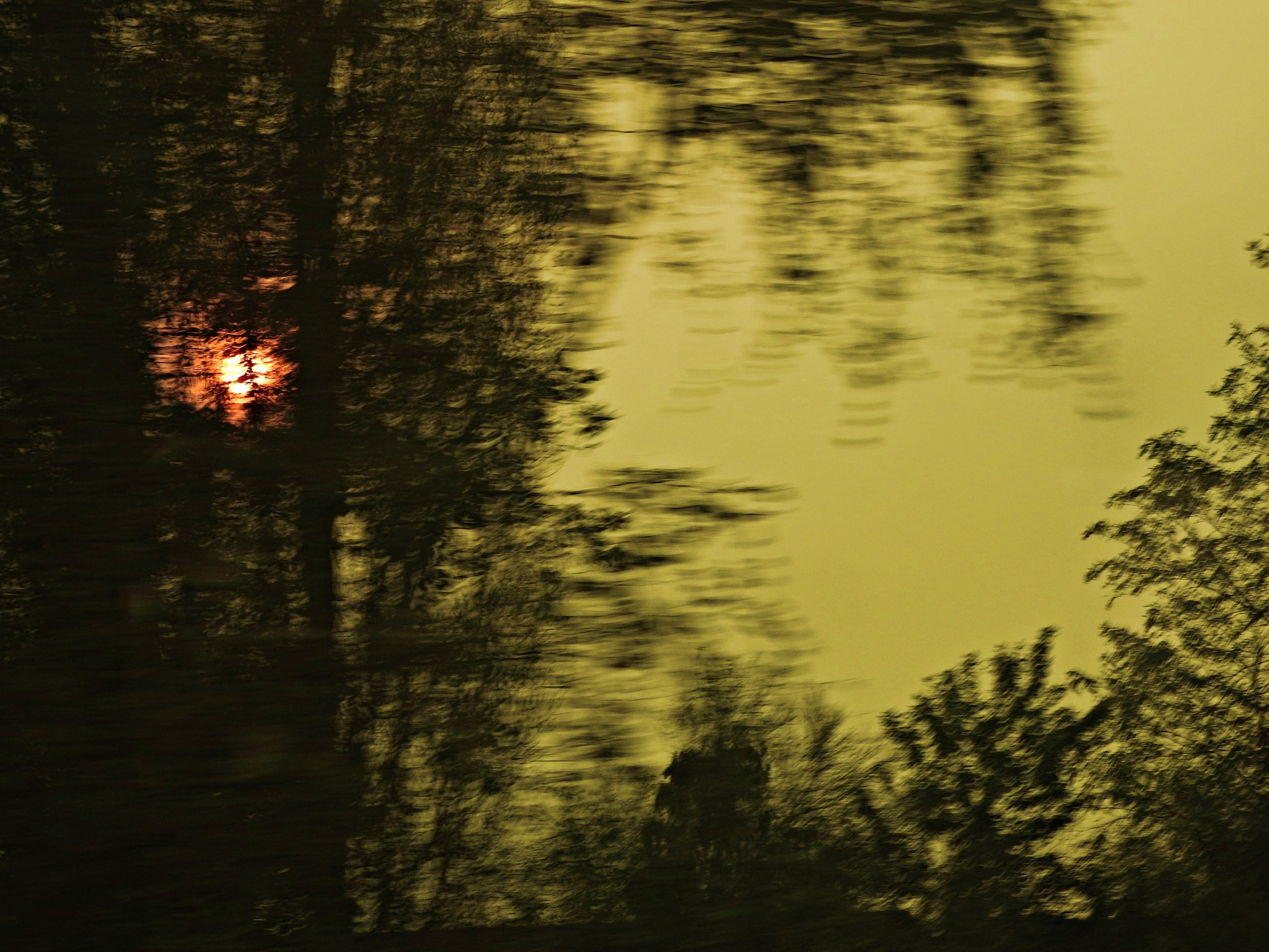 The red sun through the trees by Paolo Paparazzi