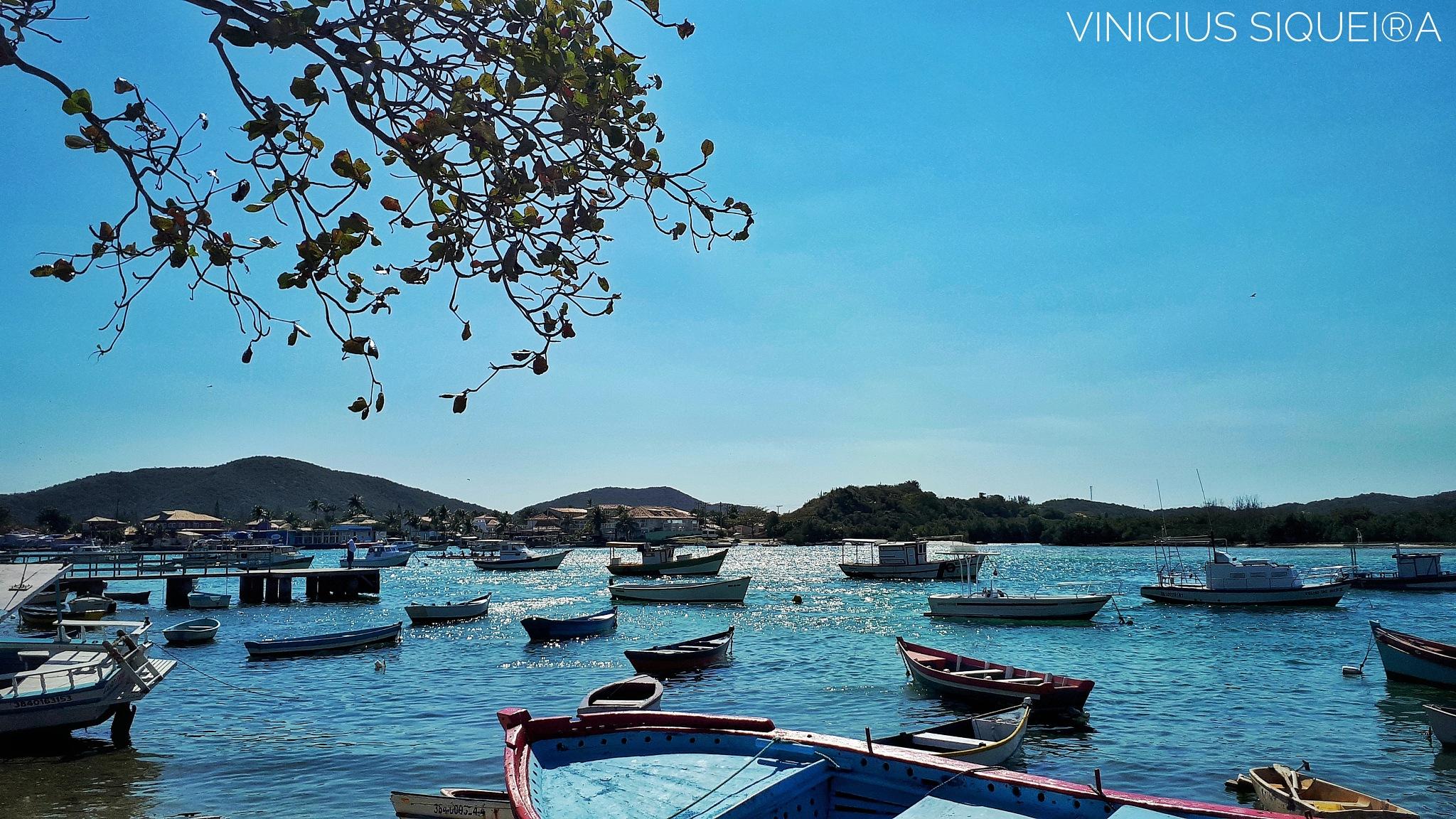 Boats  by Vinicius Siqueira