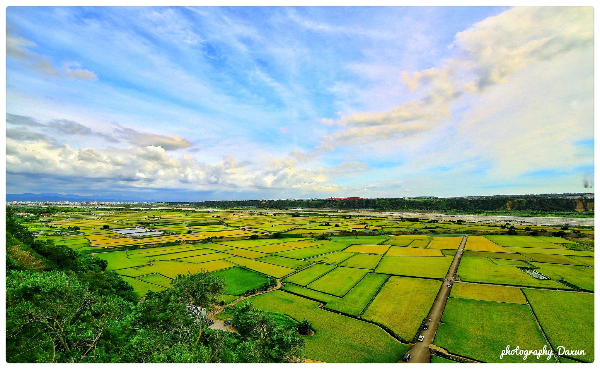 稻田收割季節 by big1120big1114