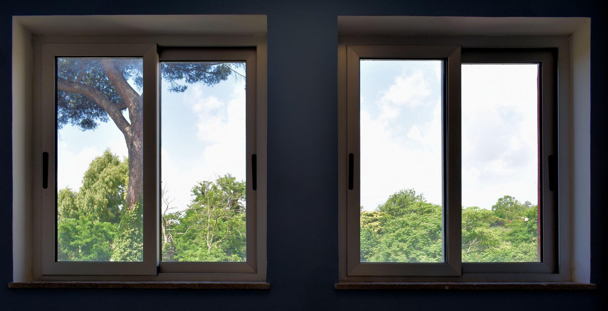 Naples - The Windows Of The Green World - 2 by Mister Arnauna & Gatto Giuggiolone