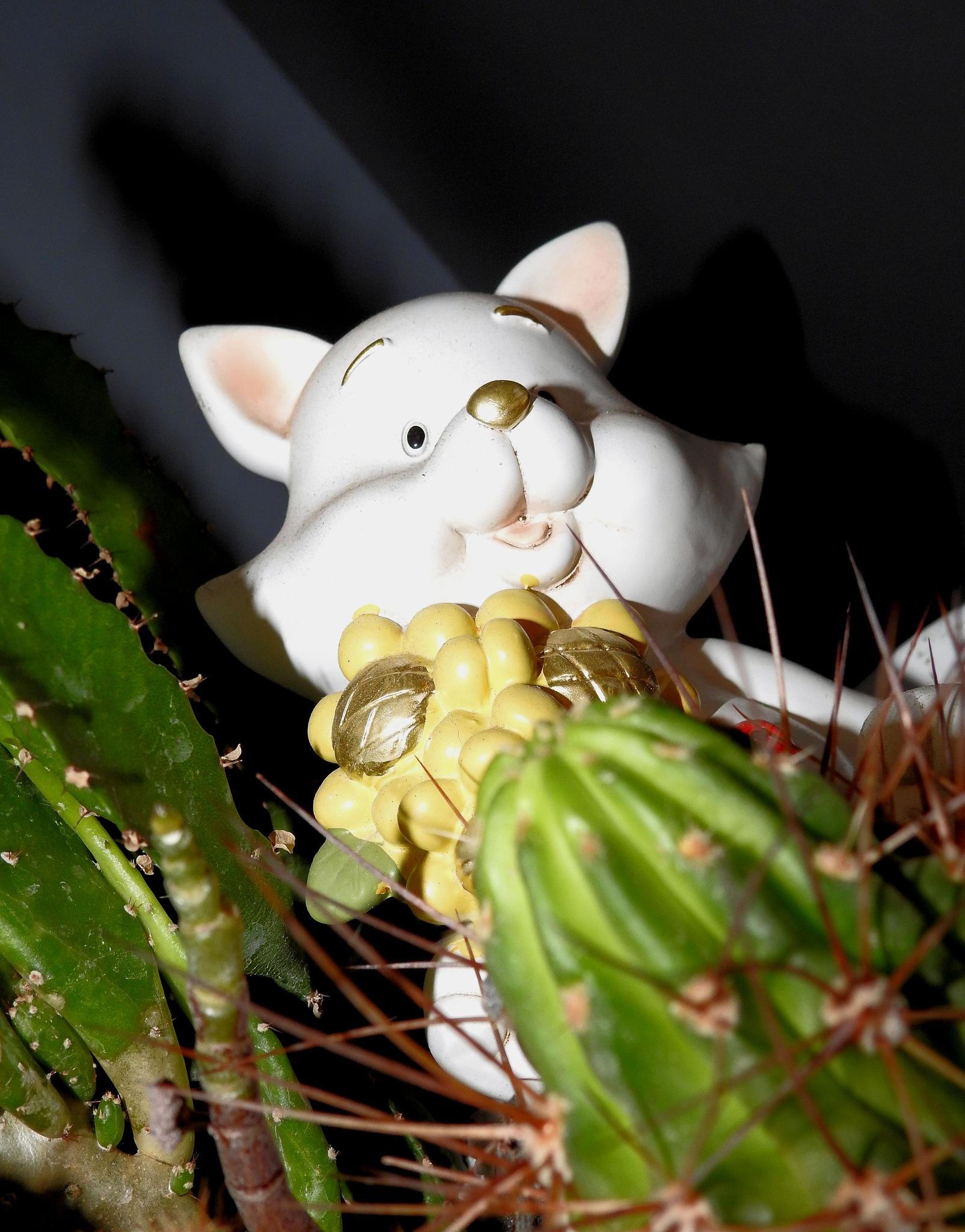 Un...animalot molt estrany - A very strange Little animal!!! - 01 by Mister Arnauna & Gatto Giuggiolone