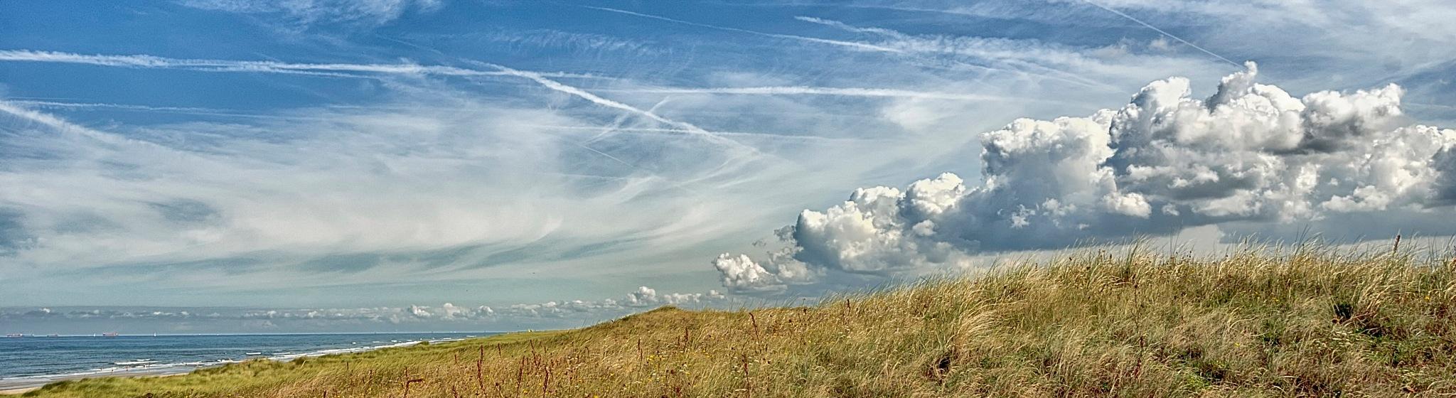 Dune. by Che Ketona