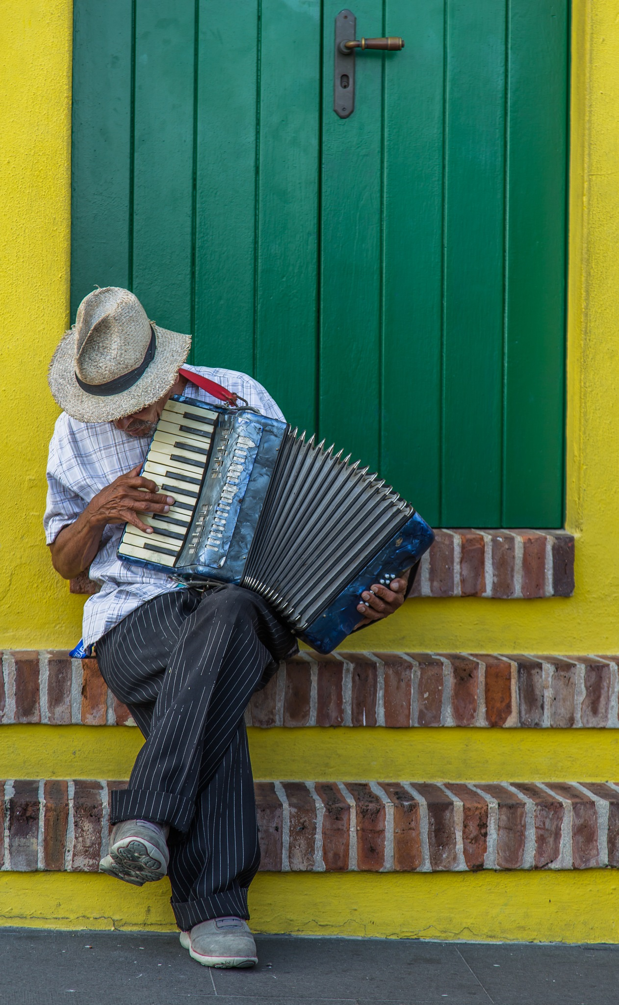 The Accordion  by Matthew Fish