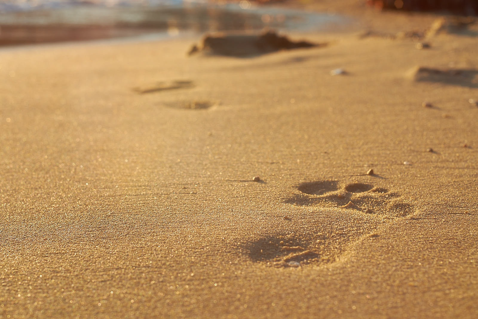 Footprints in the Sand by Zoran Rilak