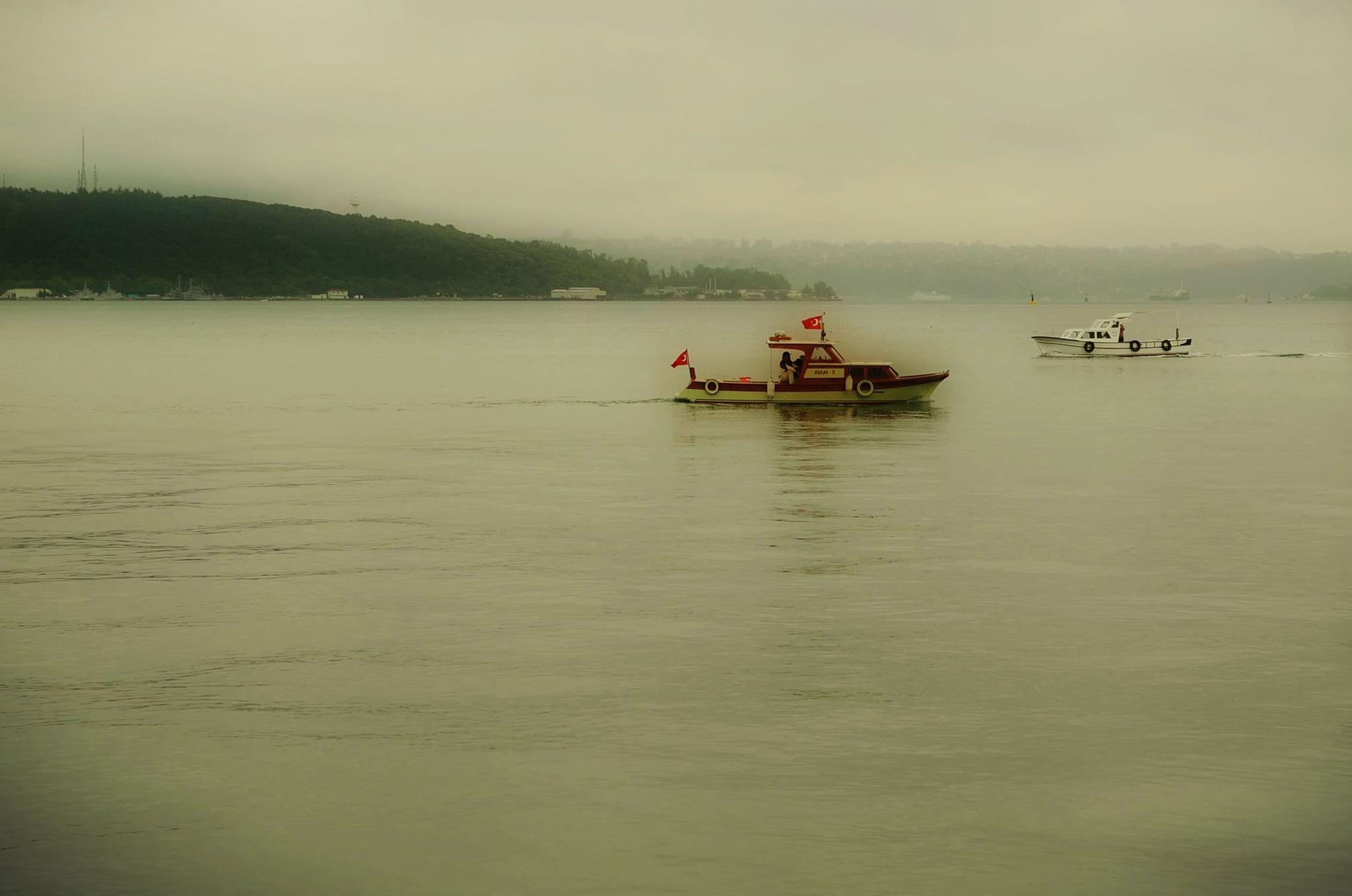 mist by Emel Seckin