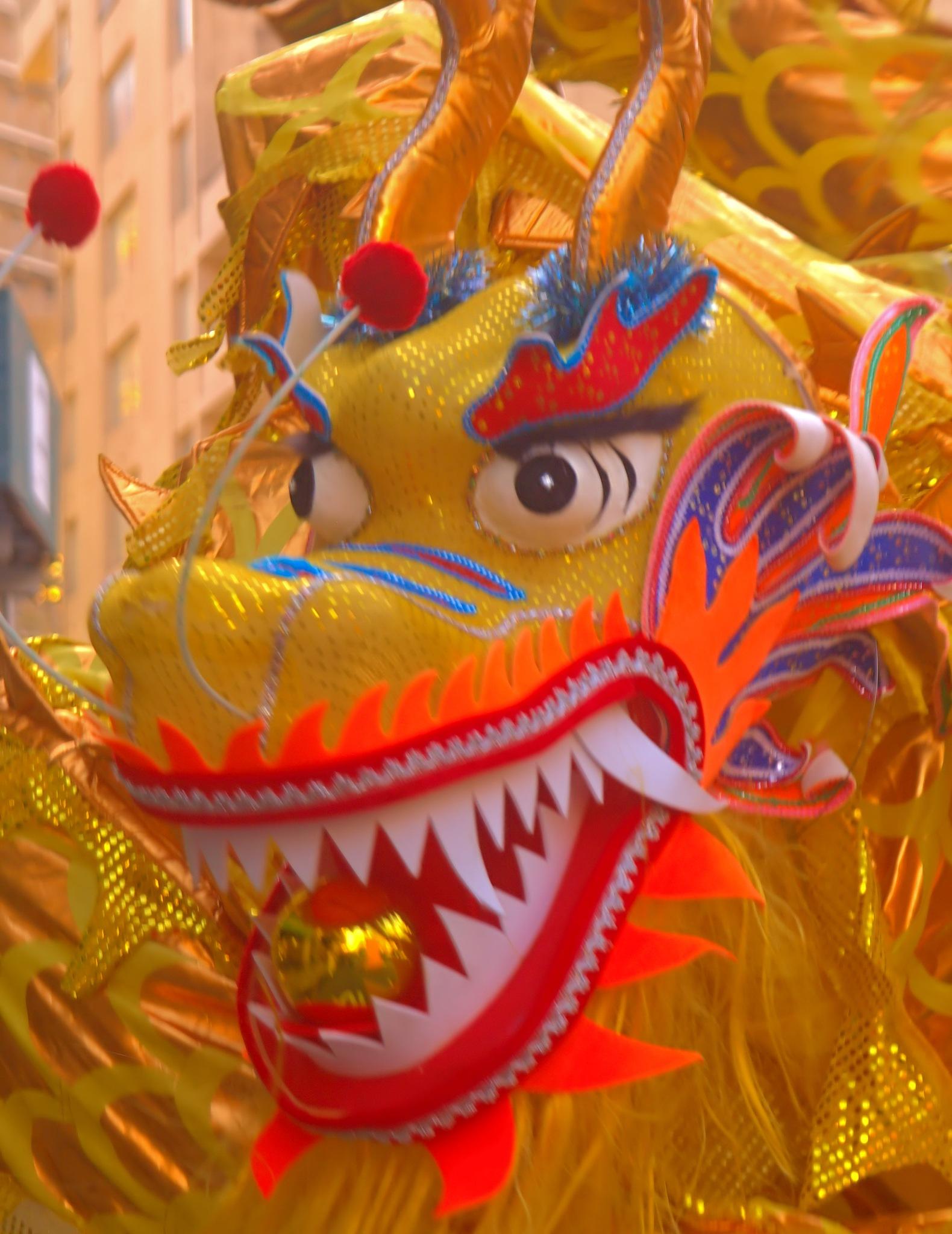 Dragon  by Orlando Bautista