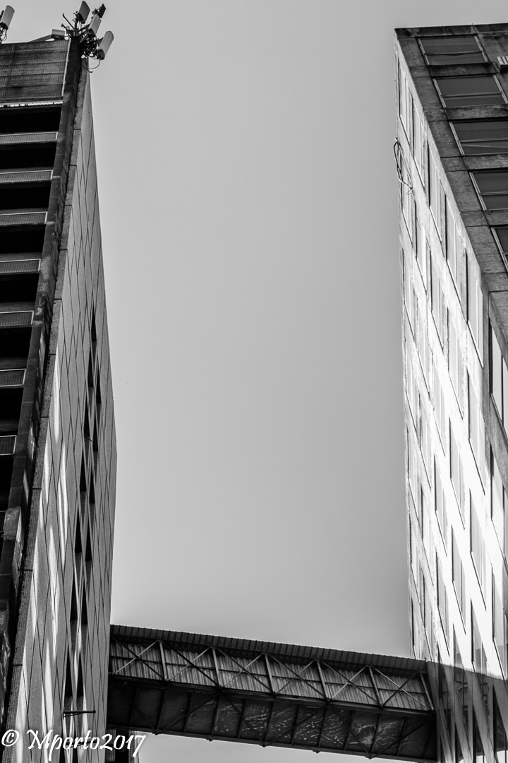 The towers  by Marcel Porto