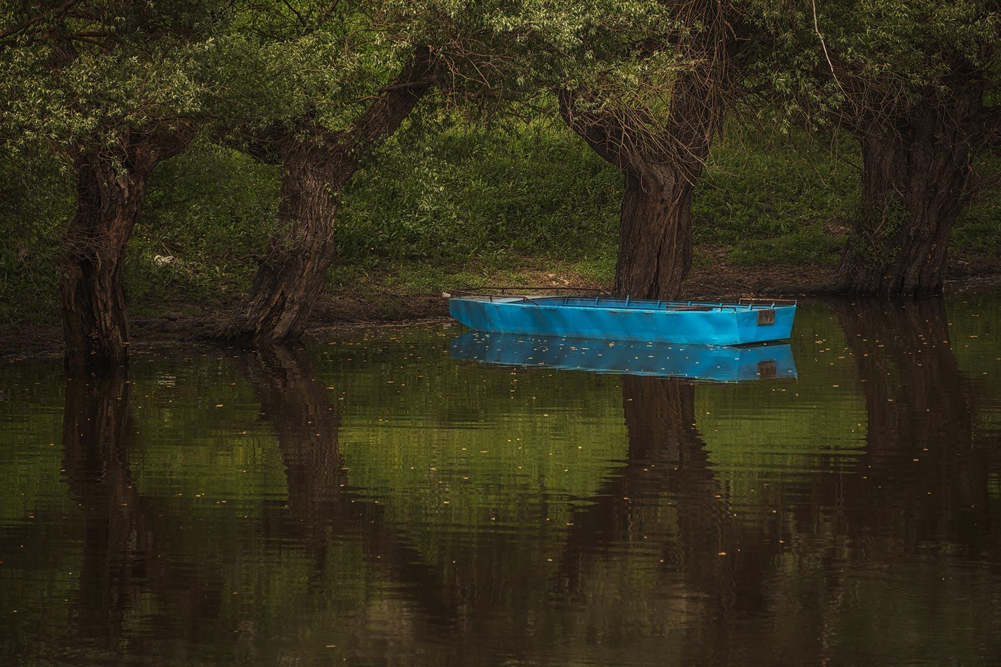 blue by belatojzan