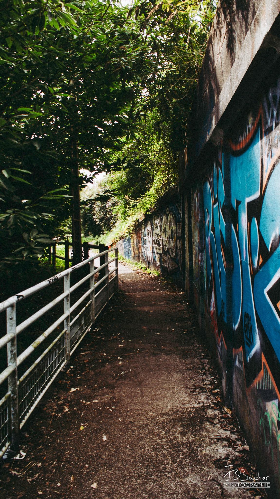 Le chemin by JB Boucher