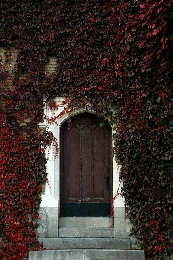 Scarlet Door by Benoit Aubry