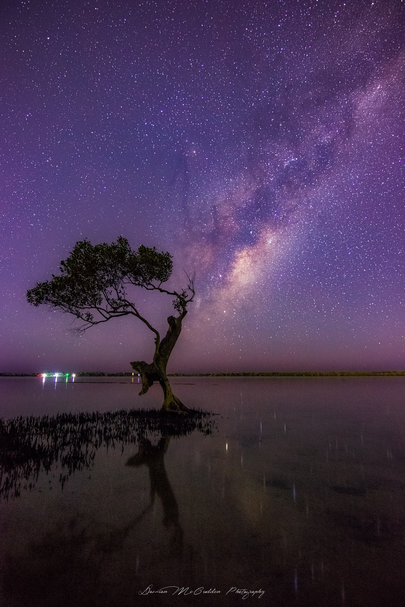 **Milky Way Tree** by Damian McCudden