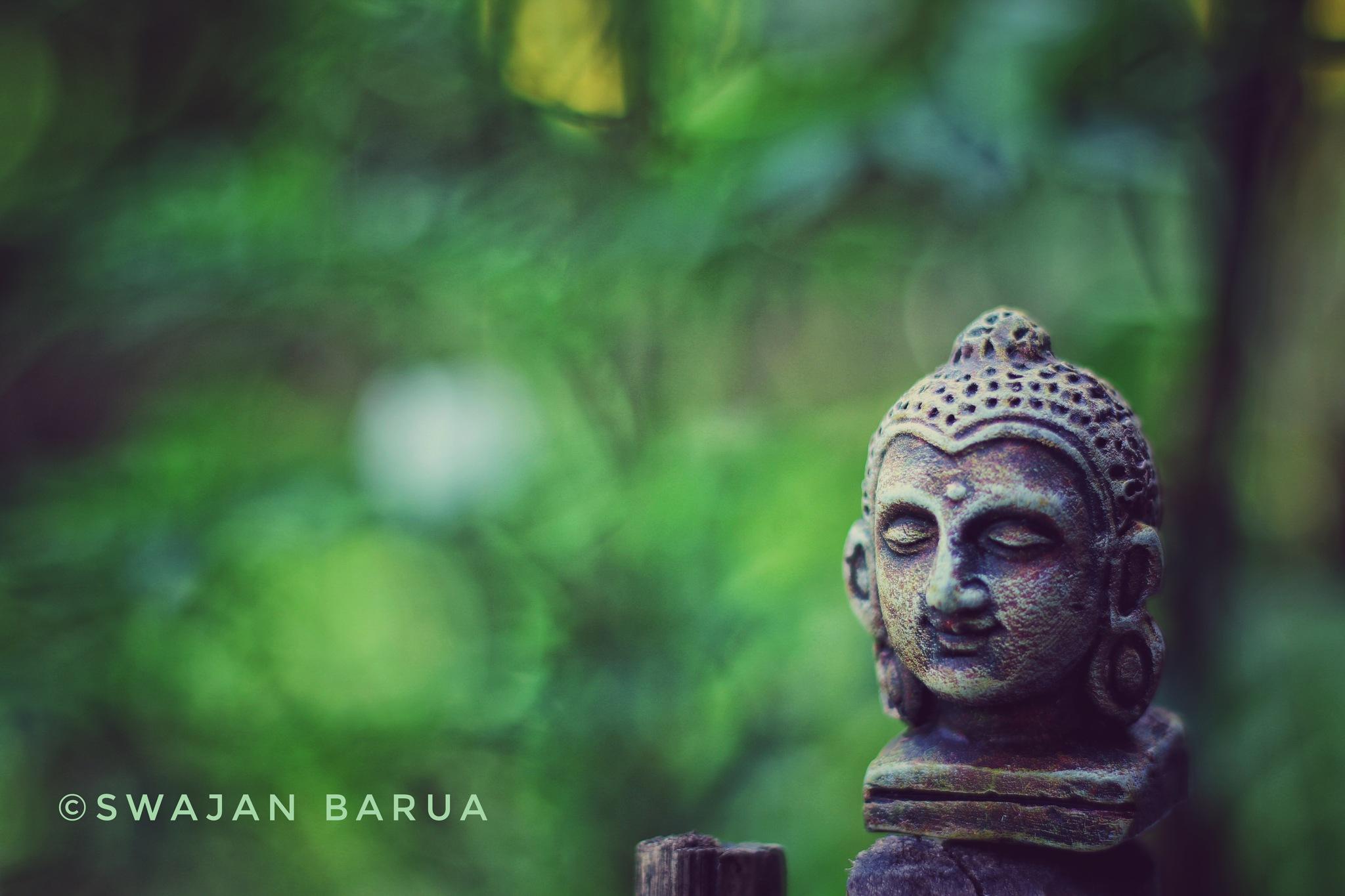 Statute  by Swajan Barua