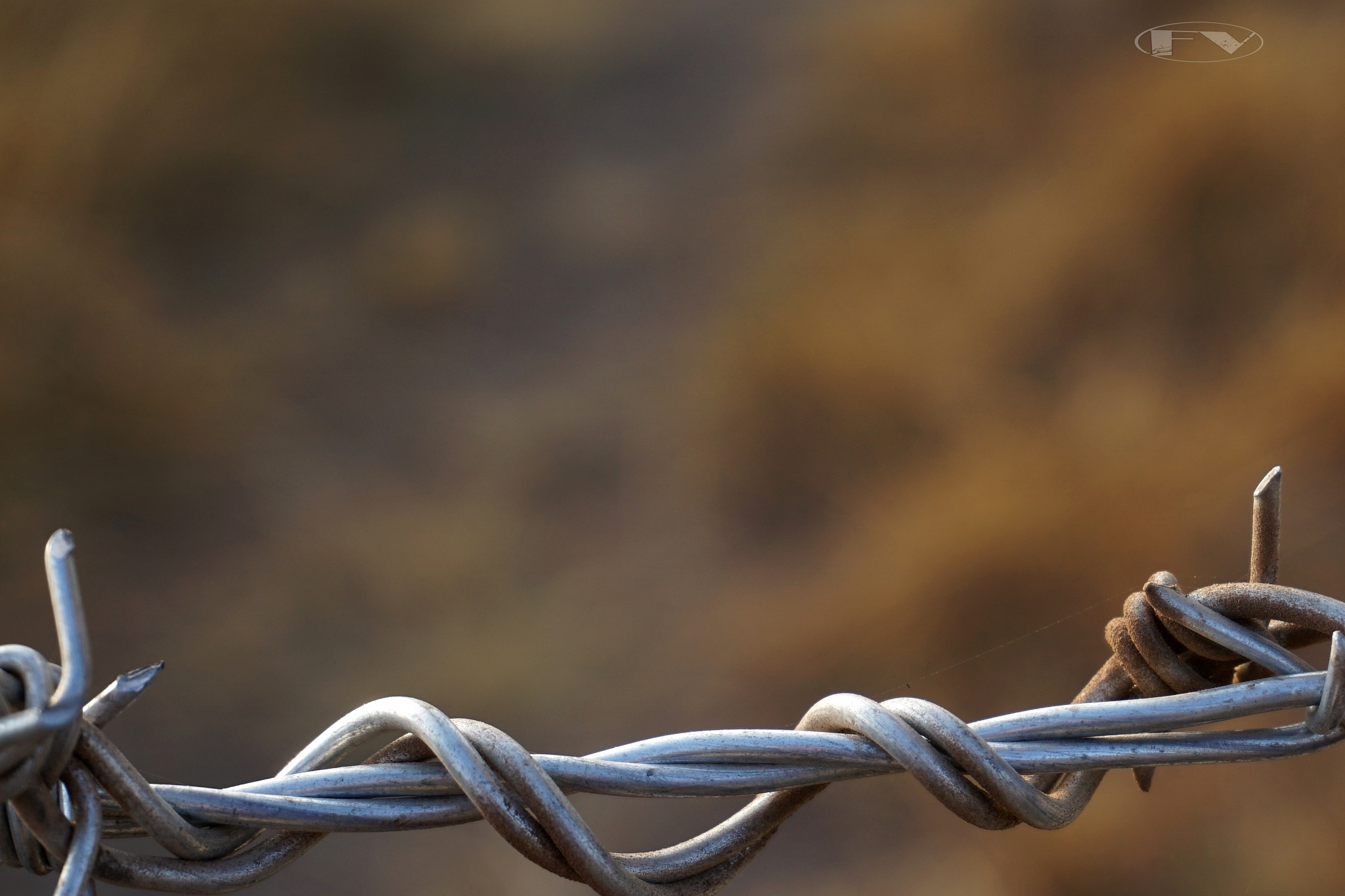 barbed wire... by Francisco-Vernet