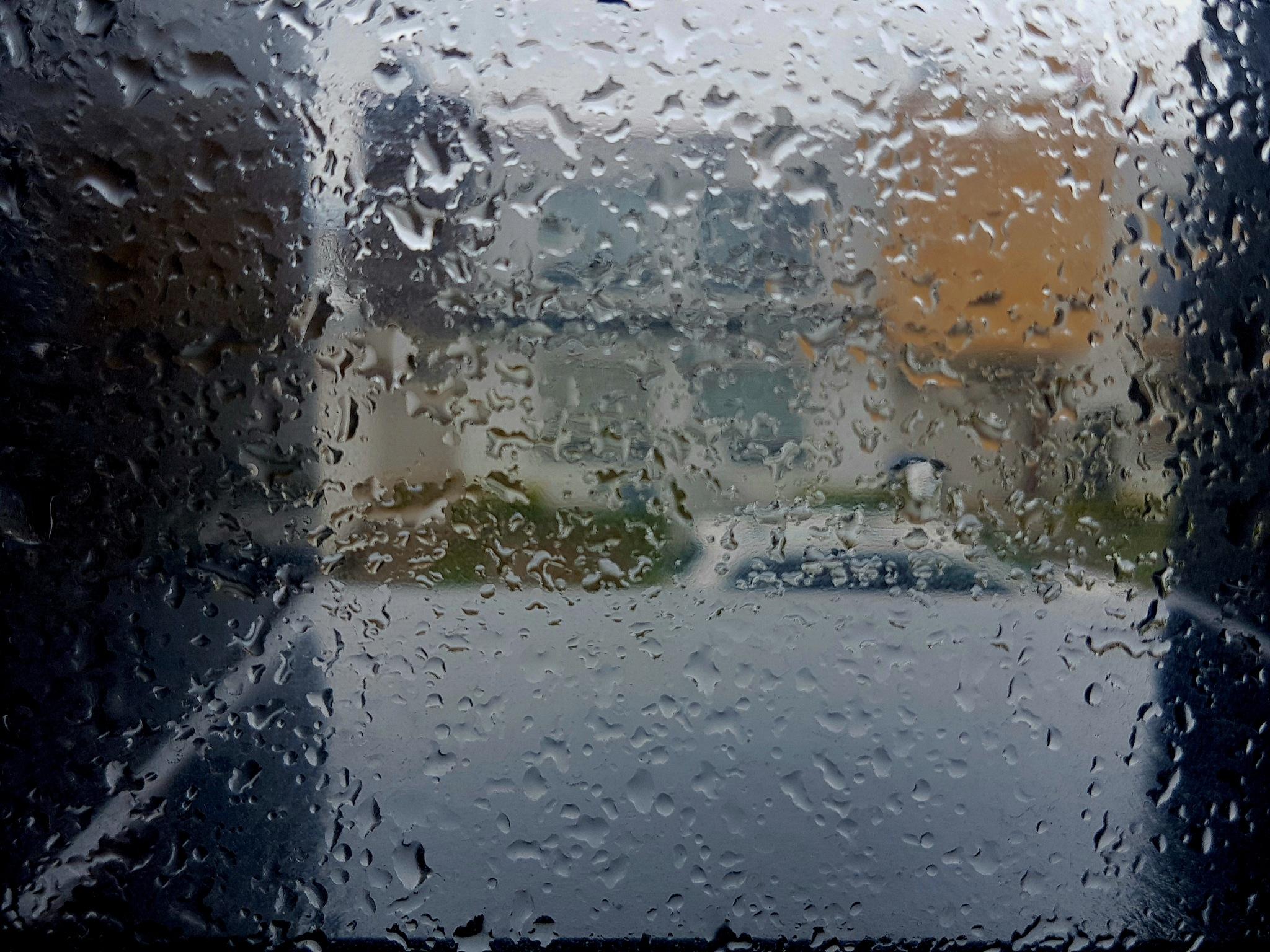 Behind rain by Francisco-Vernet
