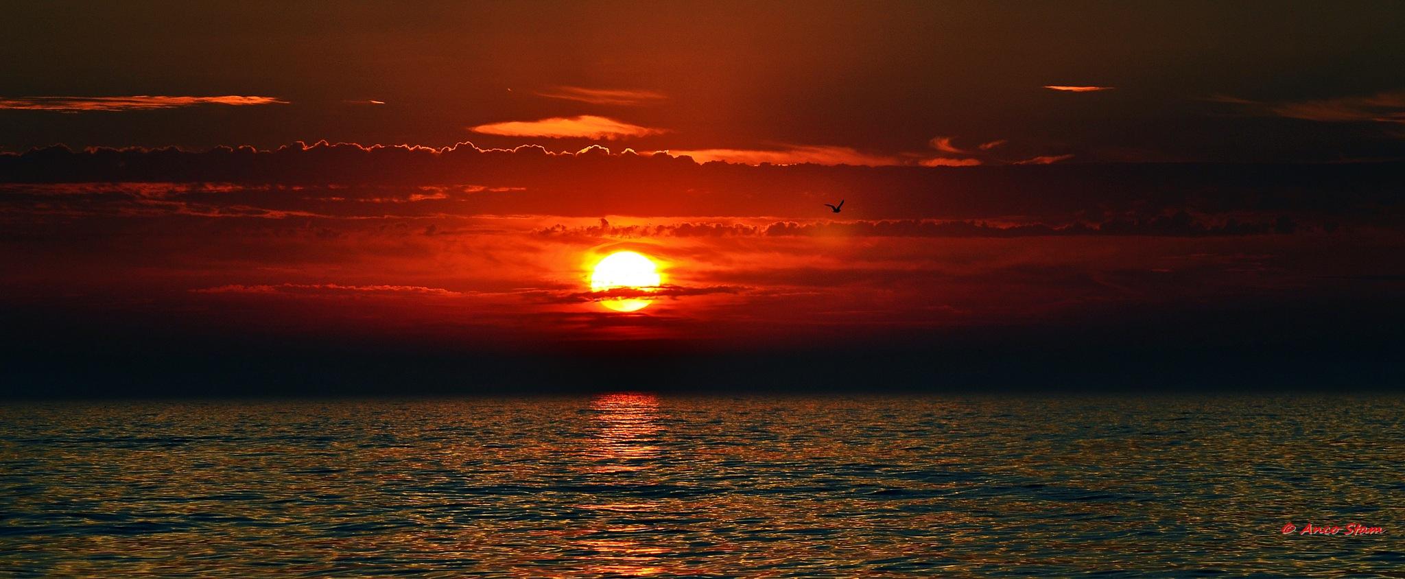 sun sets in sea by Anco Stam