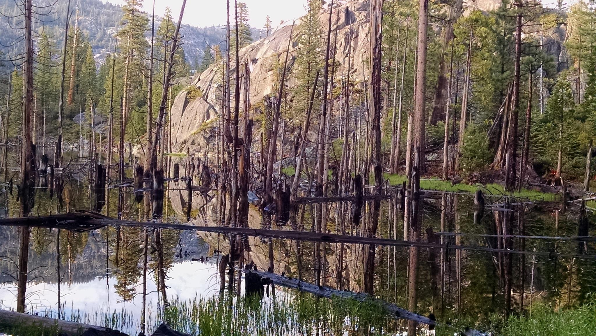 Eagles Lake by Wanda Vaughn