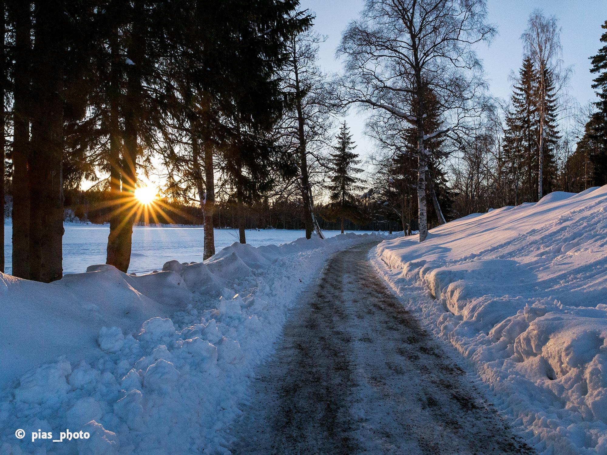 Kvällssol igår kväll vid Hammardammen by pias_photo