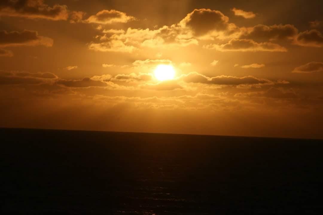 Sun by Gracelia Muro