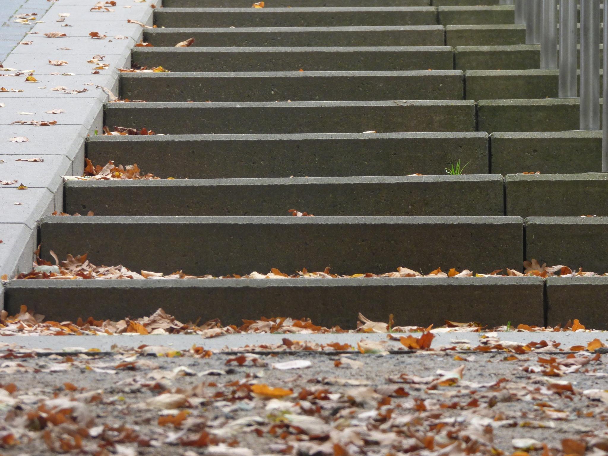 Herbst und Treppe  by Karim Marawe