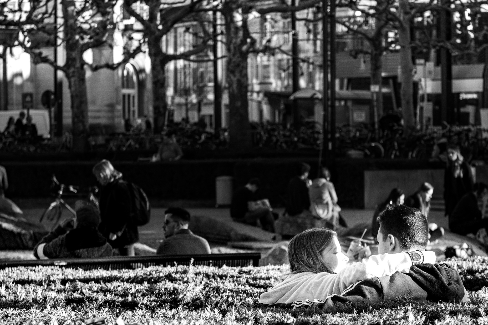 First warm sun in the park by vancoilliefilip