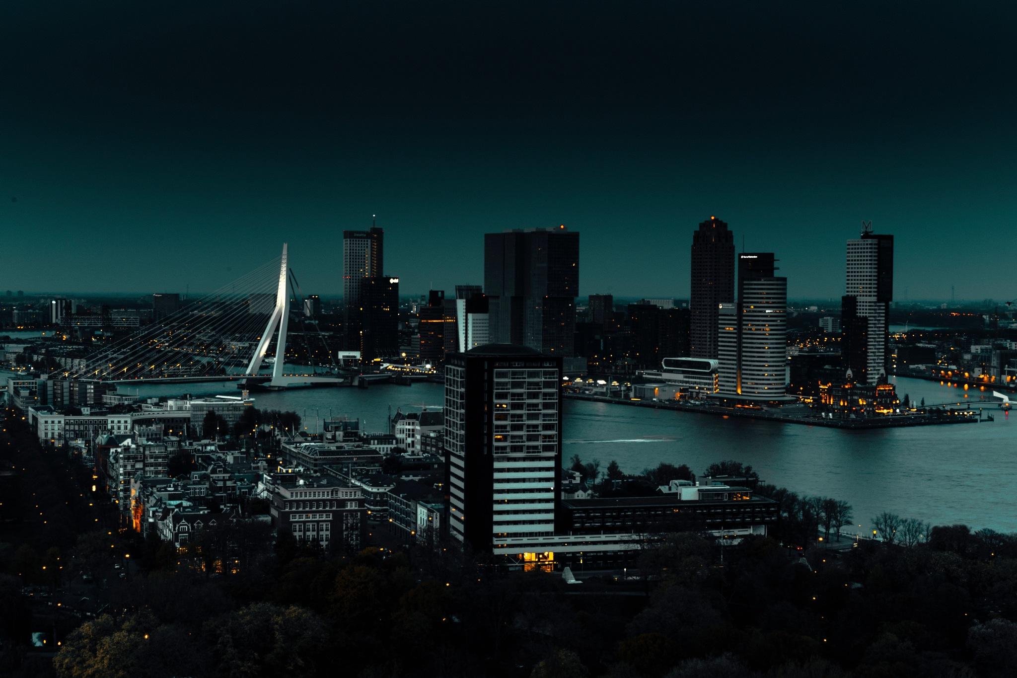 Lights of Rotterdam  by Anton Naumkin