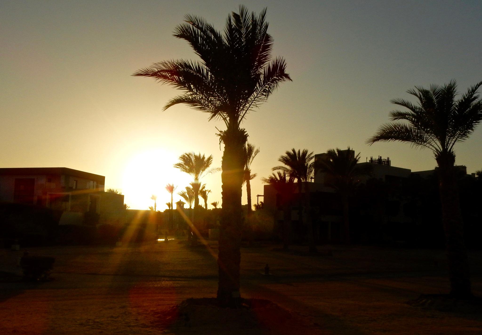 Egypte Zonsondergang by Jitske Knol