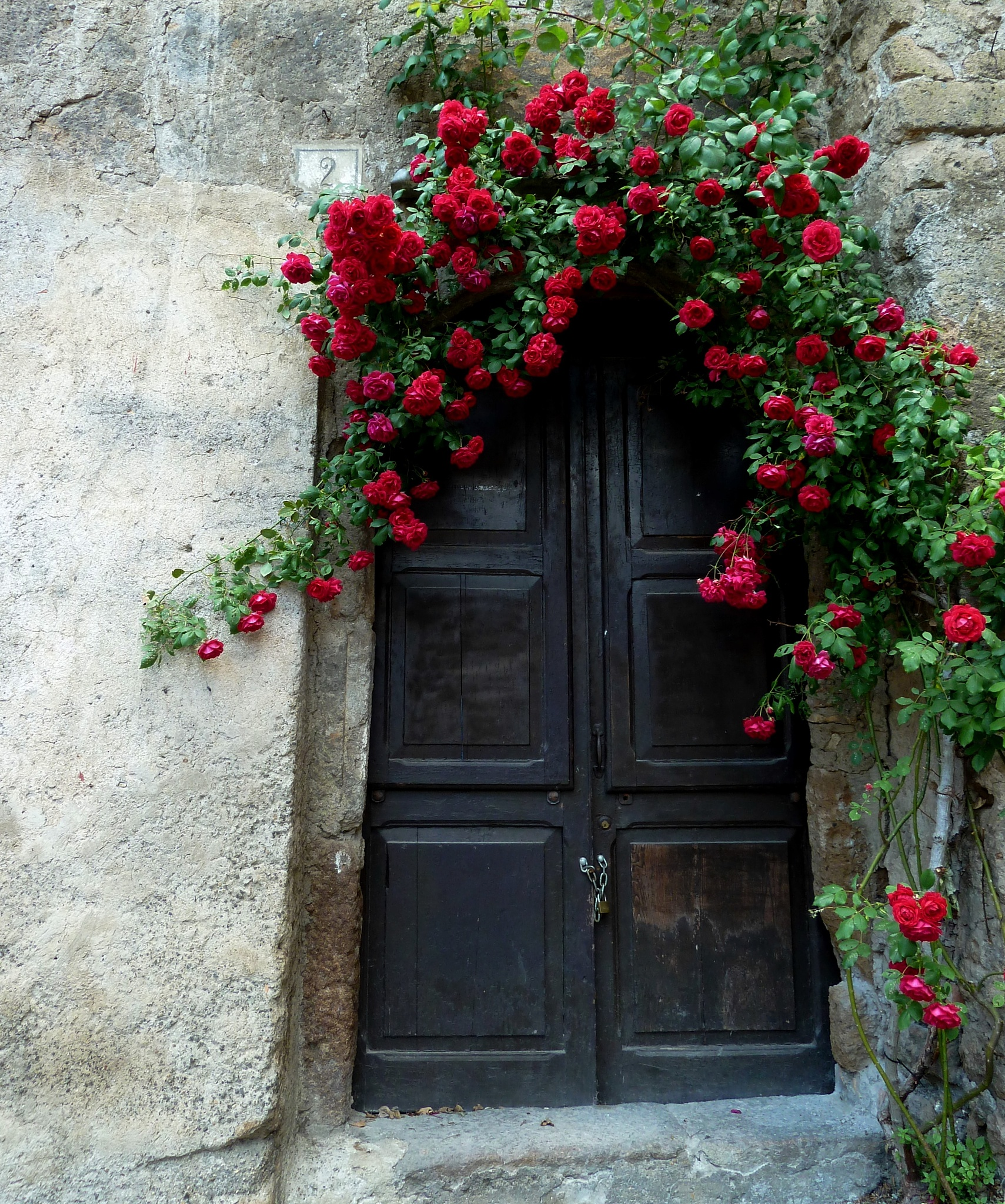 Around the borgo. An embrace of roses at No. 2. by Anton Agalbato