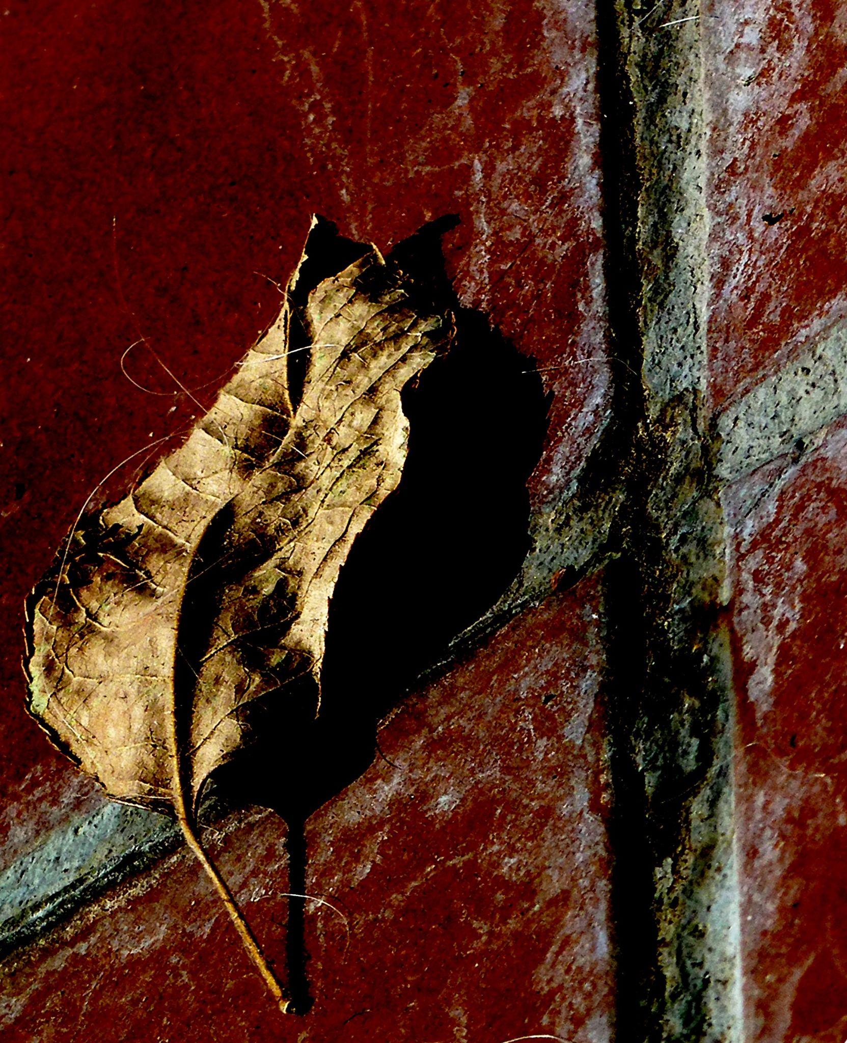 Autumn crucifixion. by Anton Agalbato