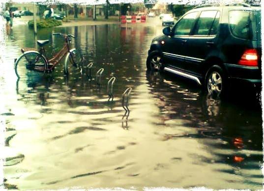 Rainfall by Lisa Nijboer