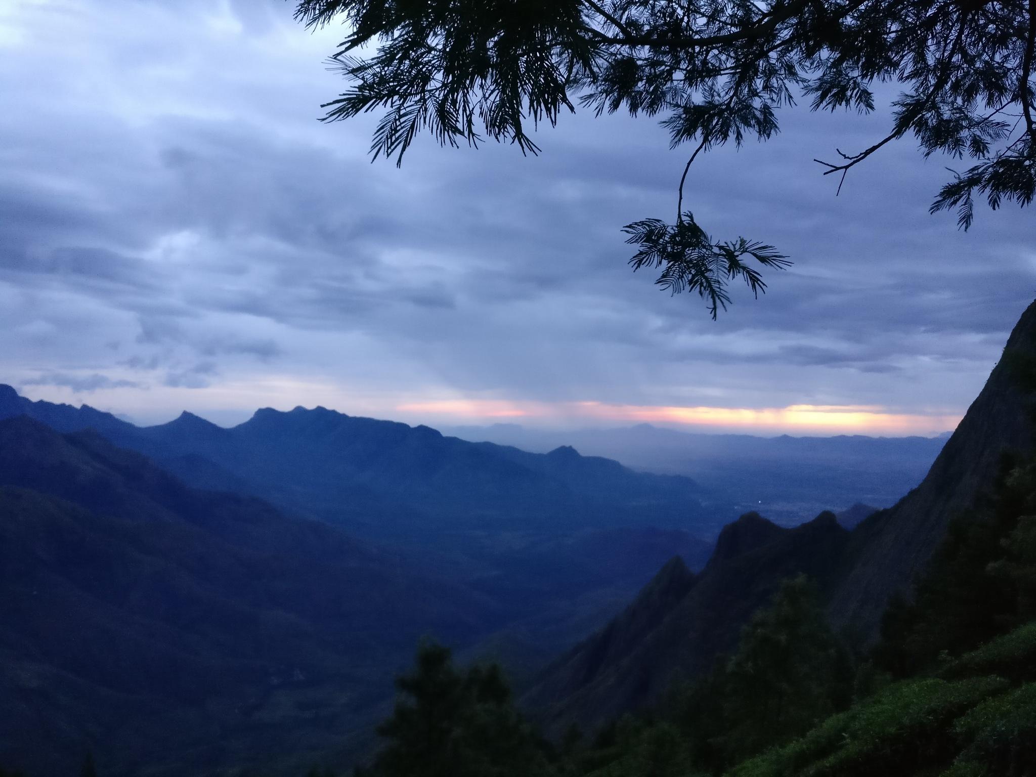 Sunrise  by Disha Bamboli