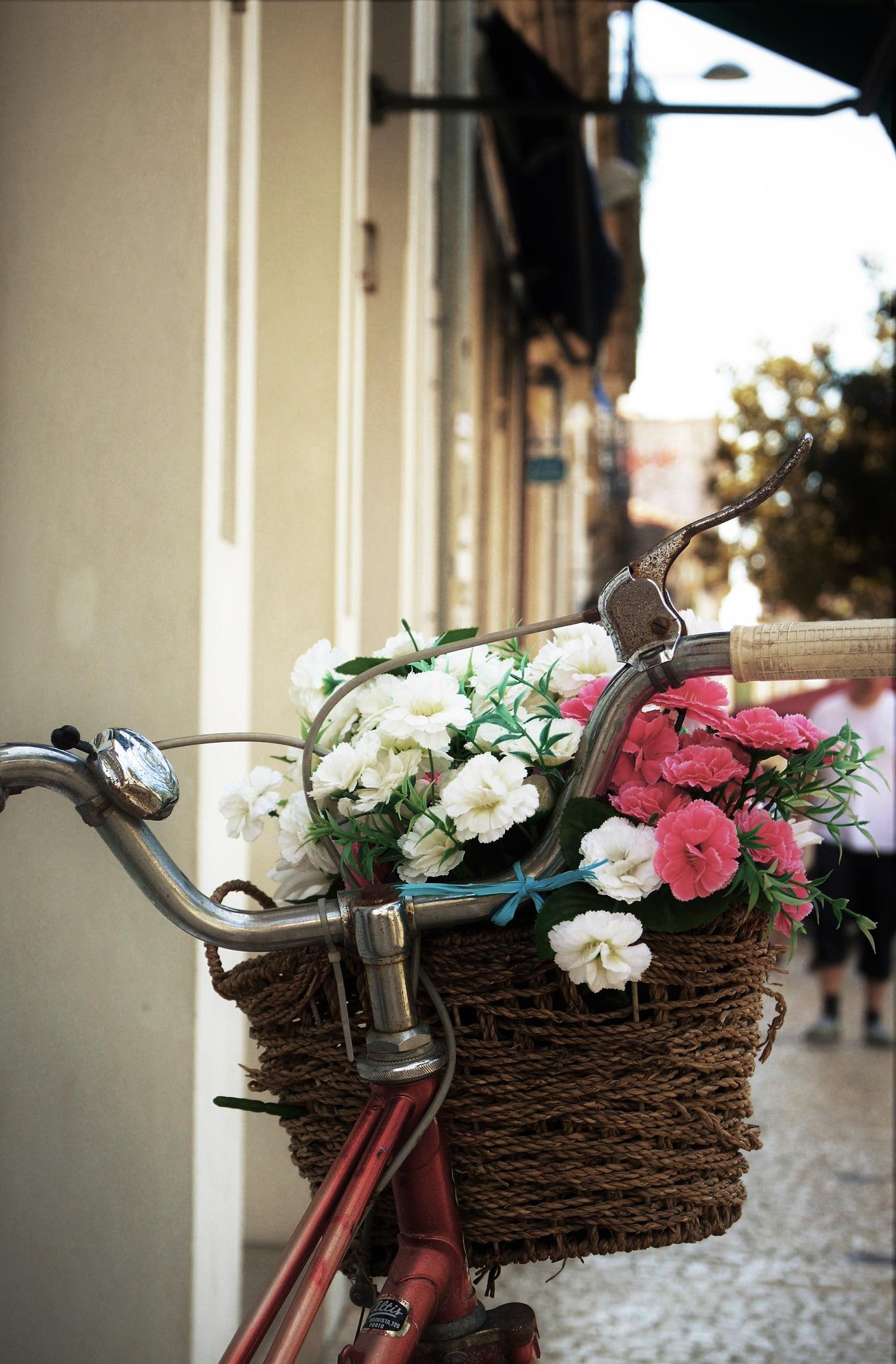 flower bike by SorayavdB
