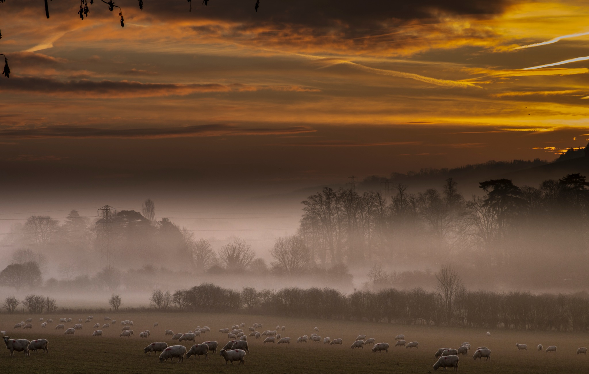 Sunrise in the South Downs England by andykmill