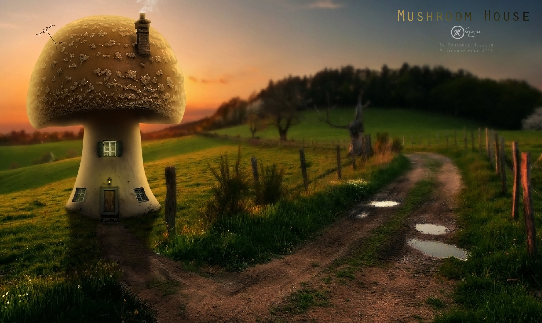 Mushroom House  by Mohammed Hussein Photography