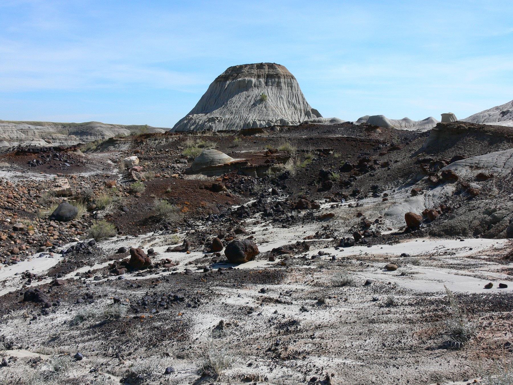 Dinosaur bone beds Red Deer River Alberta by Miloliidrifter