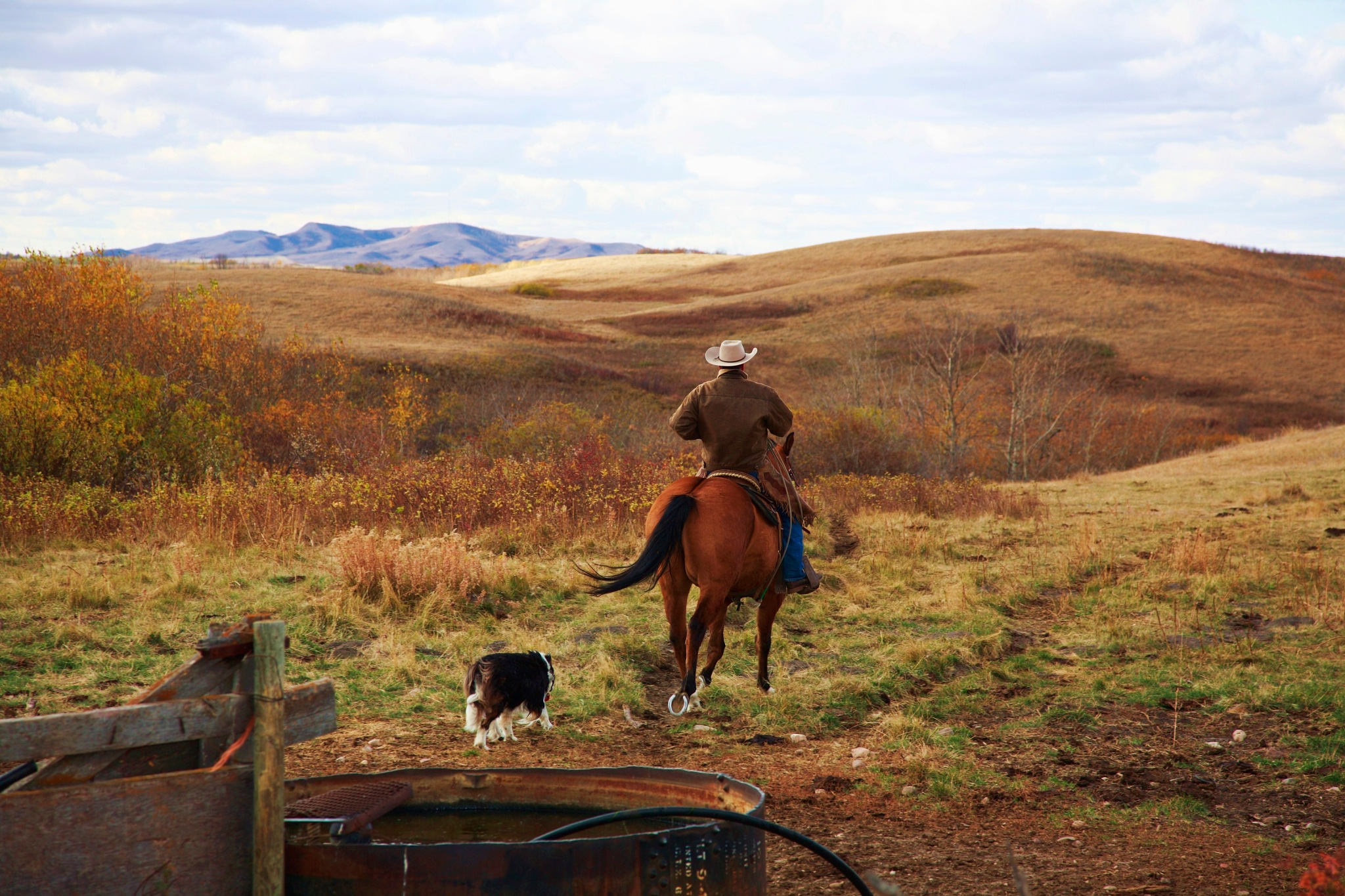 Cowboy take me away by Miloliidrifter