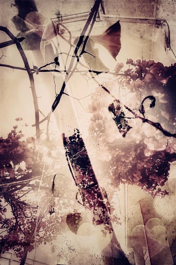 Flowery  by AyseA
