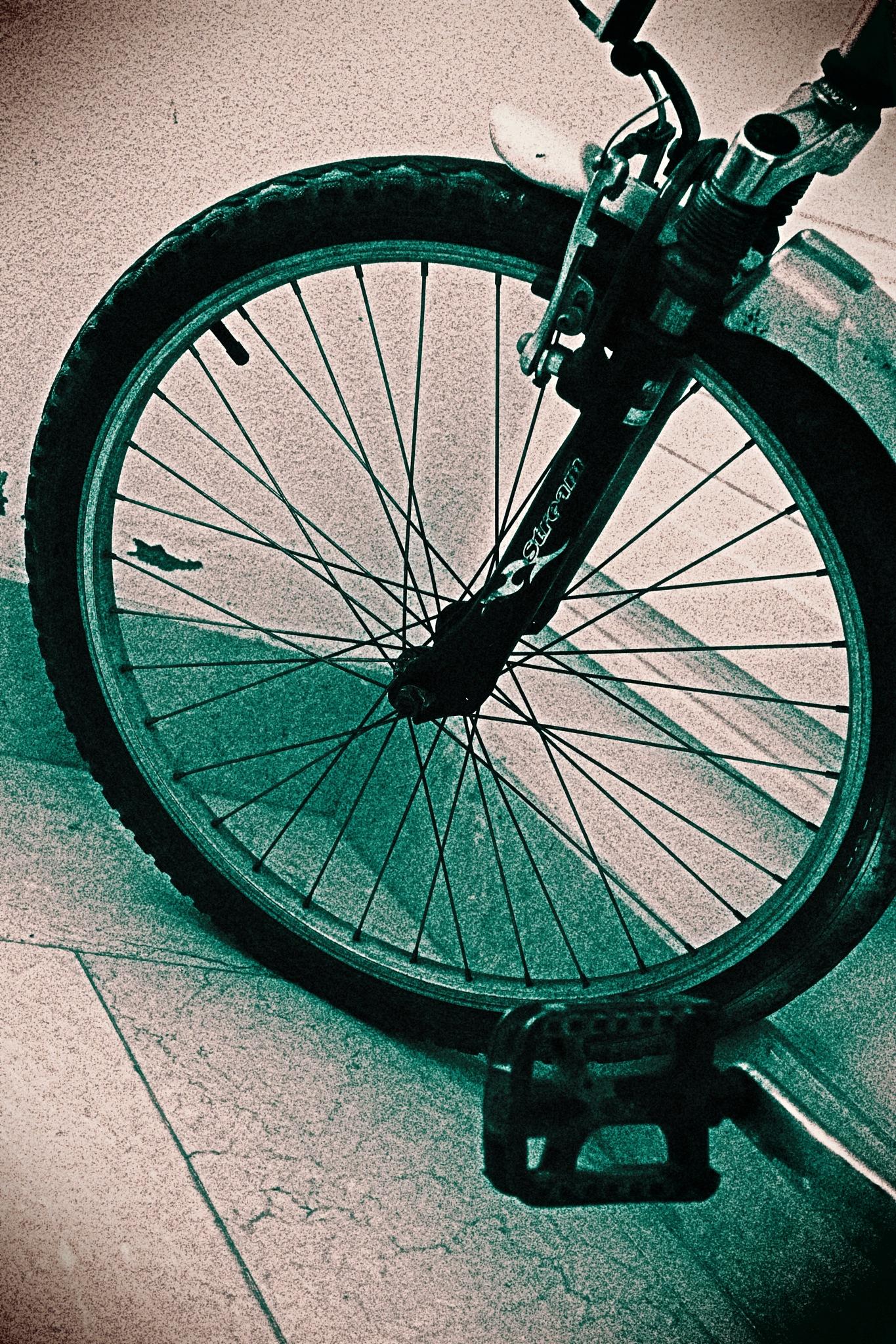 Wheel by AyseA