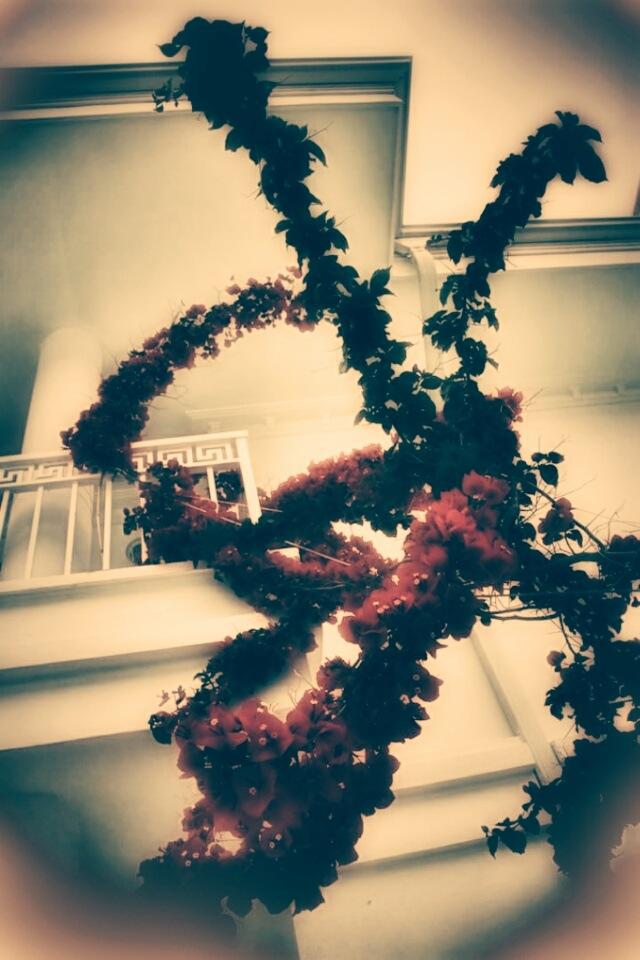 Balcony  by AyseA