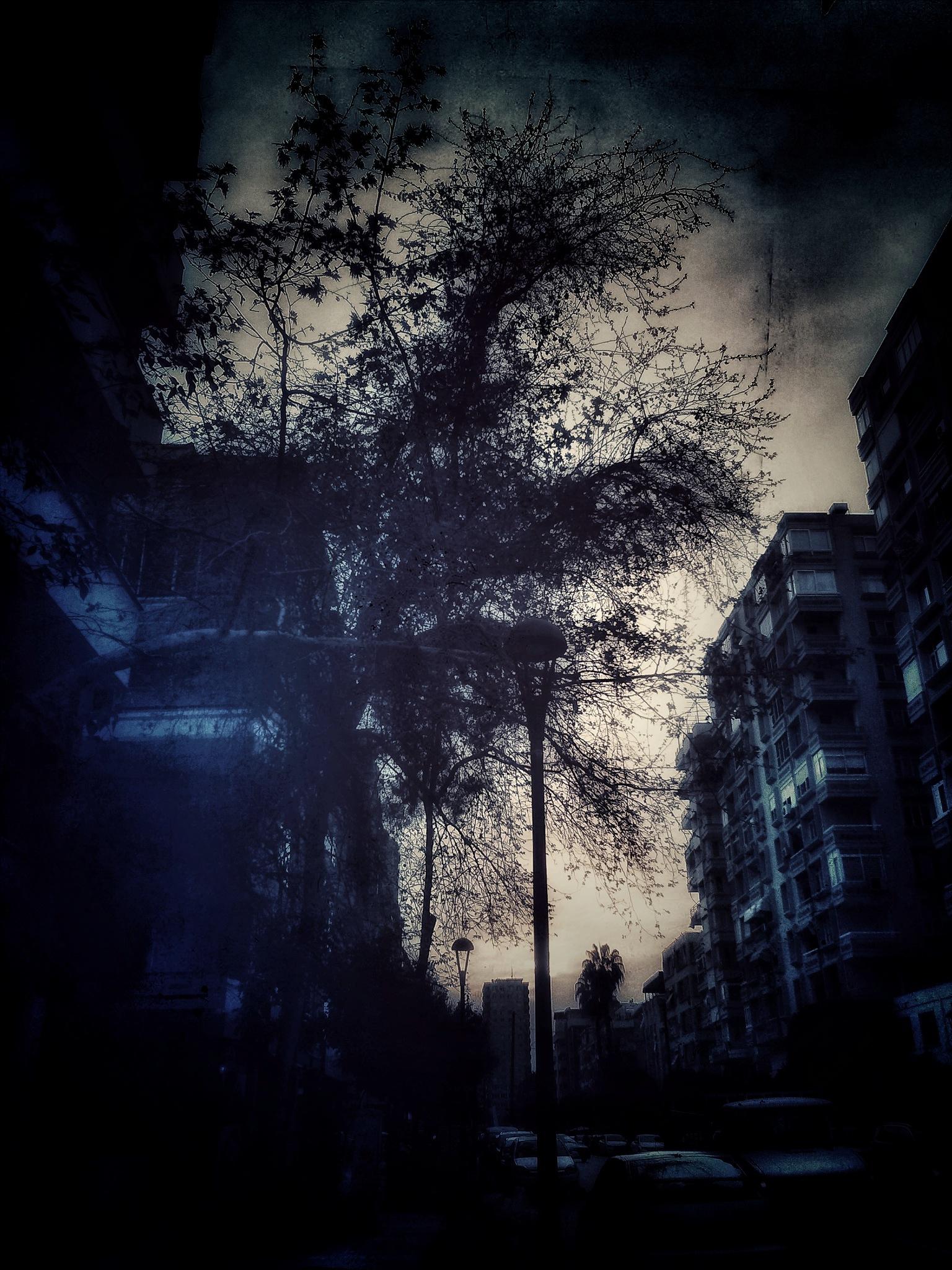 Evening in Toros Street  by AyseA
