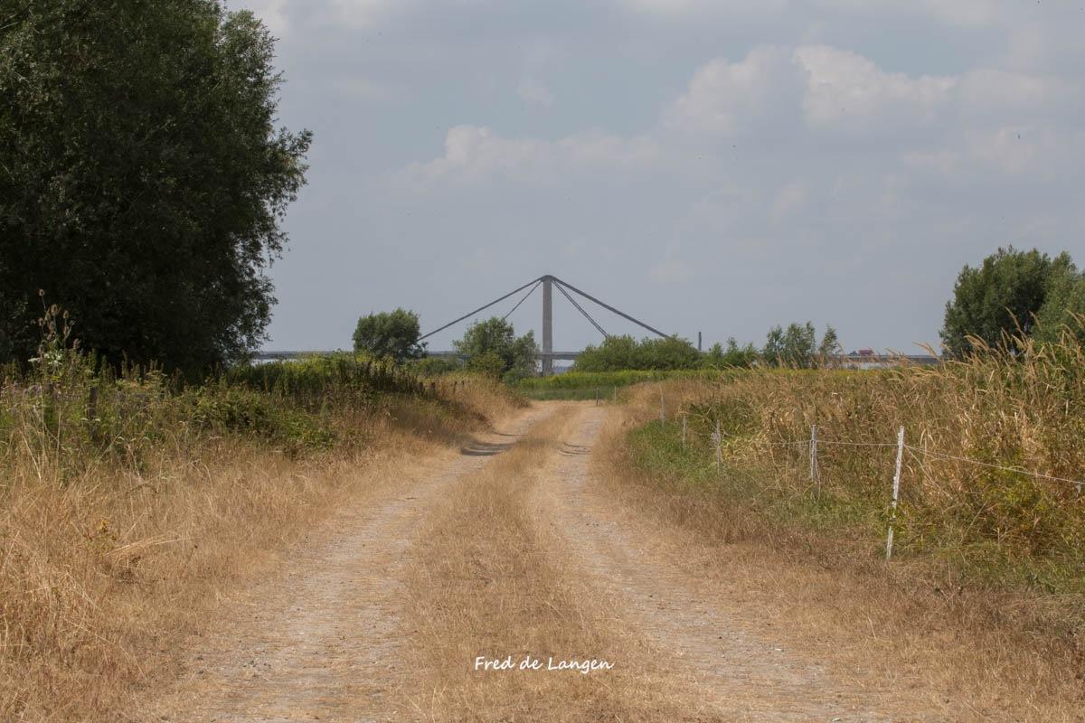 """Wetlands Beneden-Leeuwen """"very dry"""" by FdeLangen"""