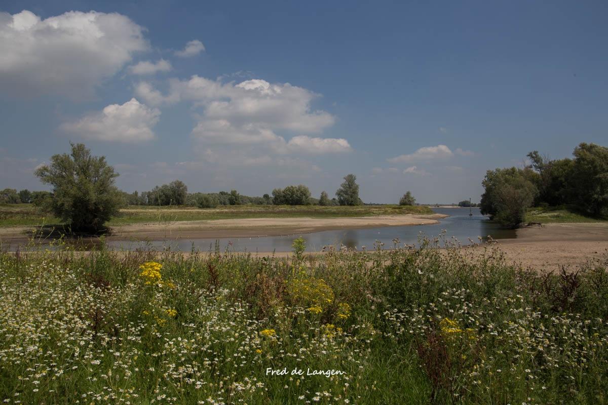 Wetlands Beneden-Leeuwen  by FdeLangen