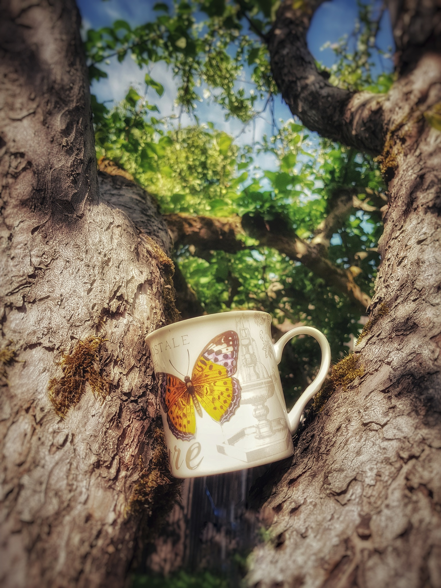 Cup of coffe ☕ by Annica Josefsson